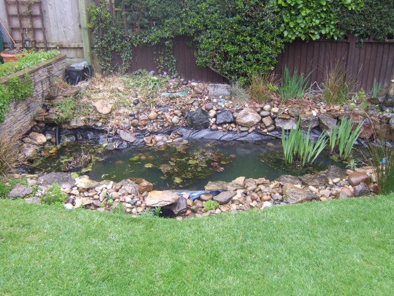 Mr Barber 39 S New Build Formal Pond