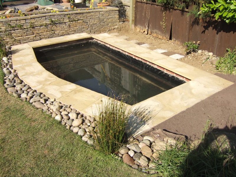 New pond and waterfall build projects for Koi pond construction cost