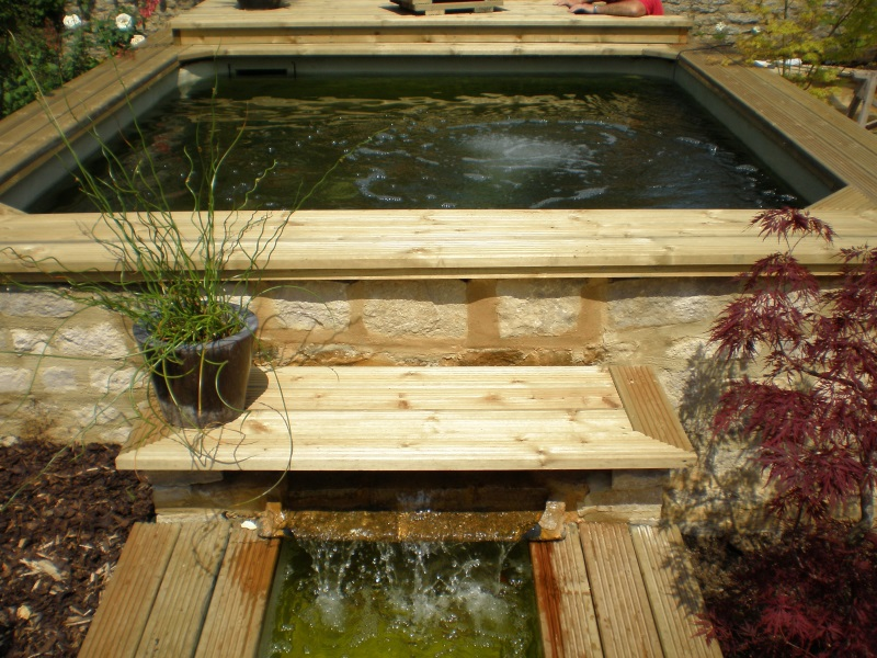 Stephen Dunning - Koi Pond new build