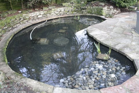 Garden pond clean works