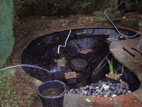 Garden pond clean works for Garden pond cleaning