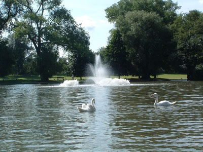 Lake Aeration and Fountain Systems