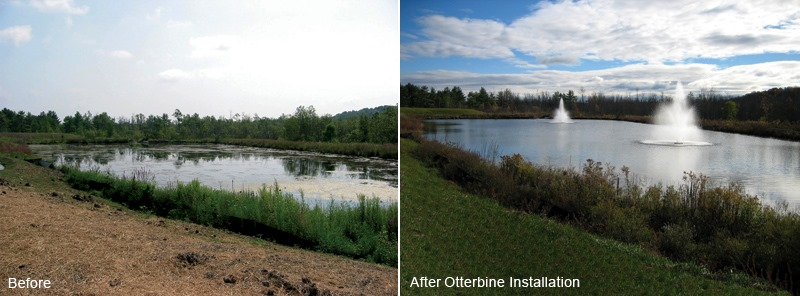 Lake Clearance Fountains before and after