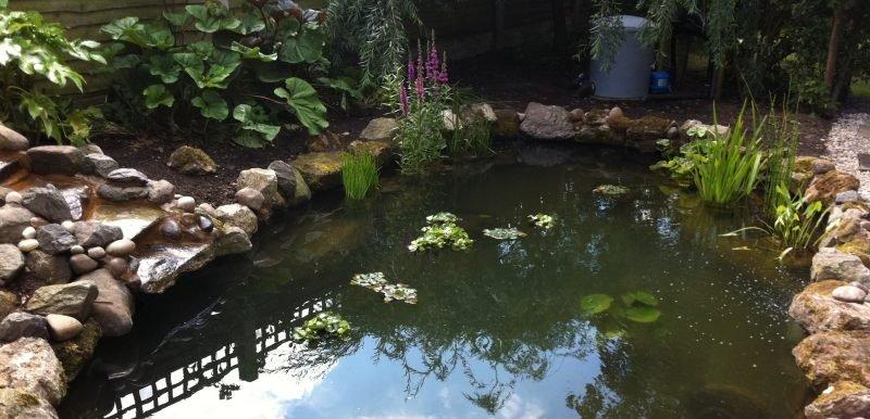 Lagoon pond