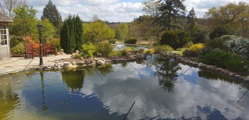 Large Multiple Ponds