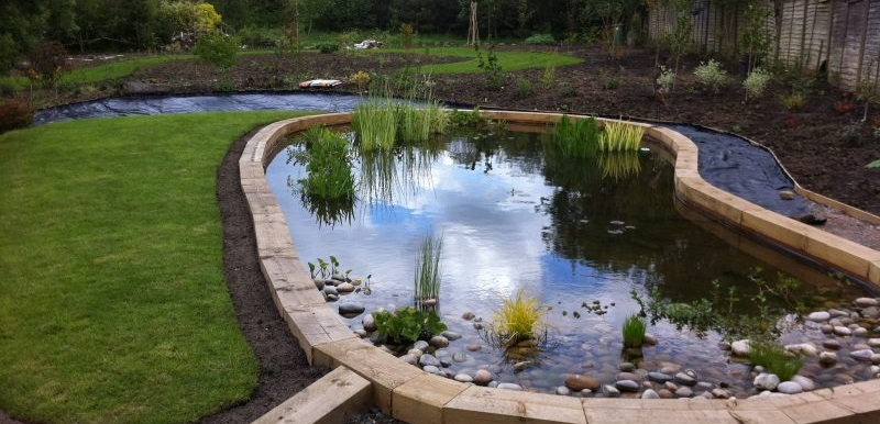Pond Filter Systems Cleans Maintenance And Relines From Head Squared Aquatics